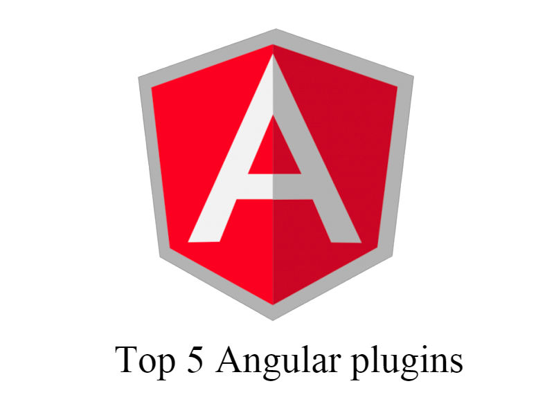 5 Most Useful AngularJS Plugins for Developers