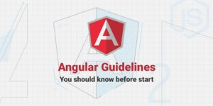 Angular Guidelines: You Should Check Before Start