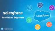 Salesforce Tutorial for Beginners